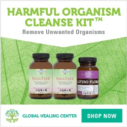 The Harmful Organism Cleanse Kit™ will help you remove unwanted organisms from your digestive tract while supporting your gut's health with probiotics.