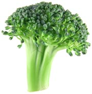 Broccoli is high in vitamin E