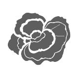 Organic Reishi Mushroom icon