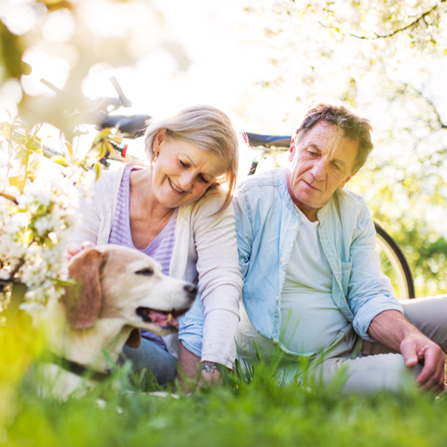 Defends Against Free Radicals – Elderly couple playing with dog in the grass